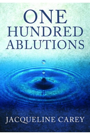 One Hundred Ablutions eBook