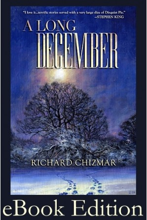 A Long December eBook