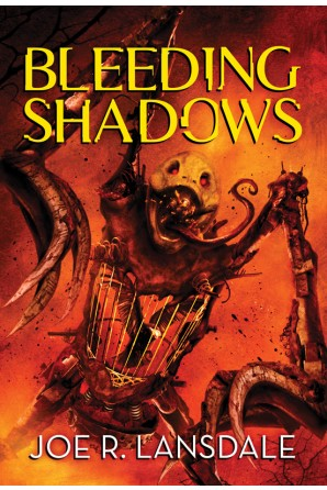 Bleeding Shadows eBook