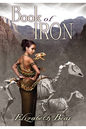 Book of Iron eBook